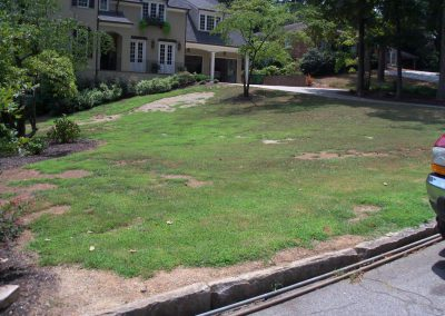 Brookhaven-lawn-before