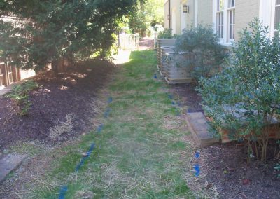 Brookhaven-path-before