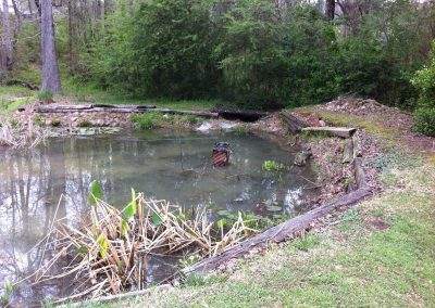 pond-snellville-before